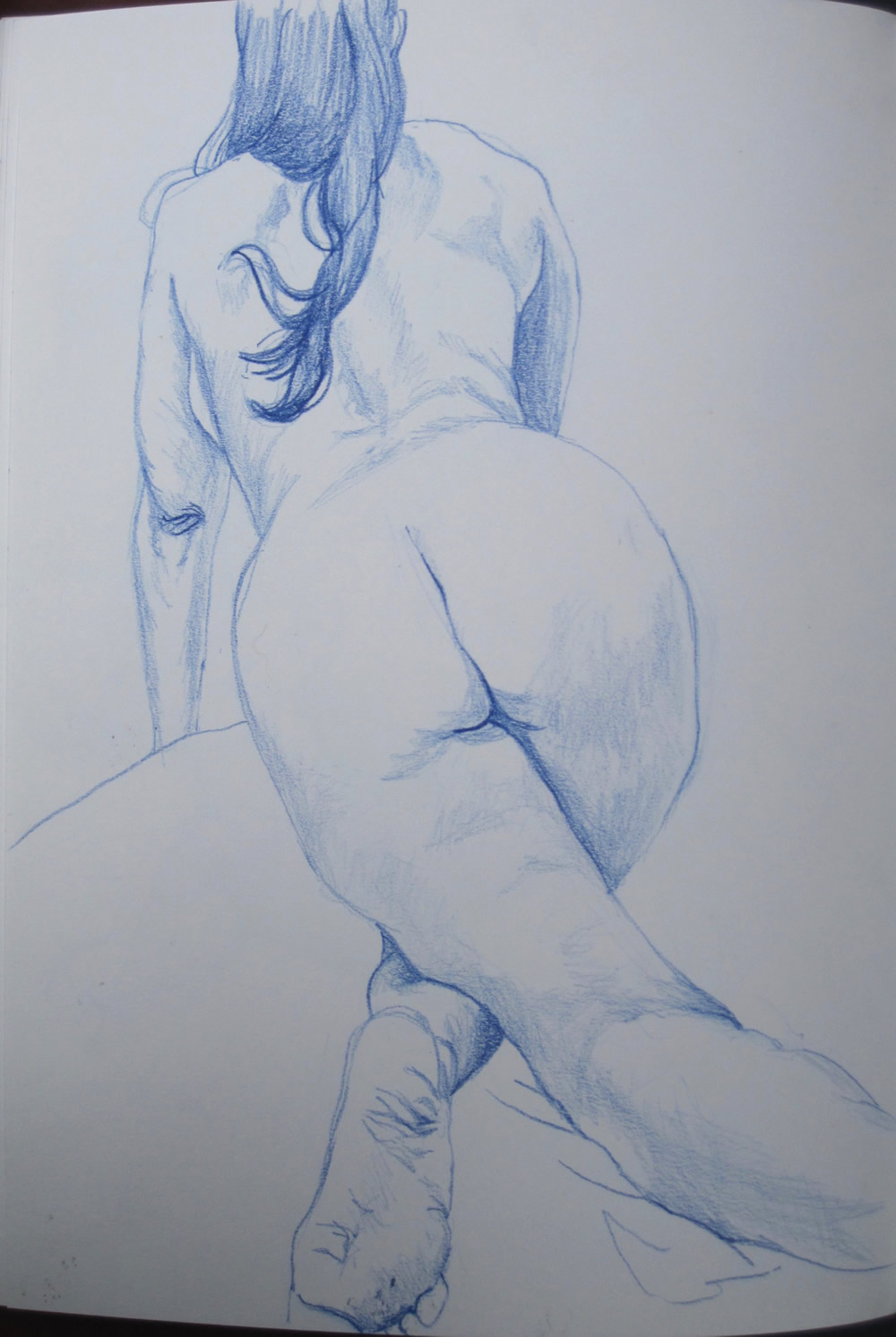 Chrissy Thirlaway, Life 11 series 2, Pencil on paper, 25x32cm