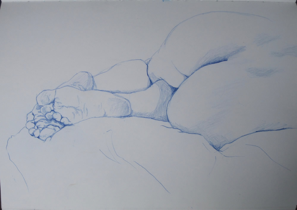 Chrissy Thirlaway, Life 25 series 6, Pencil on paper, 25x32cm
